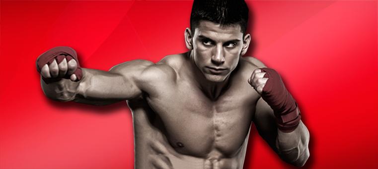MMA dude A History of Mixed Martial Arts
