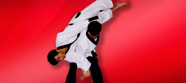 Hapkido flip A History of Aikido