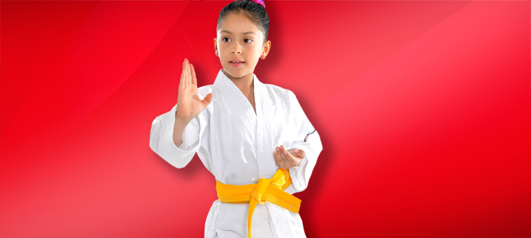 Karatekids 8 Karate for Kids