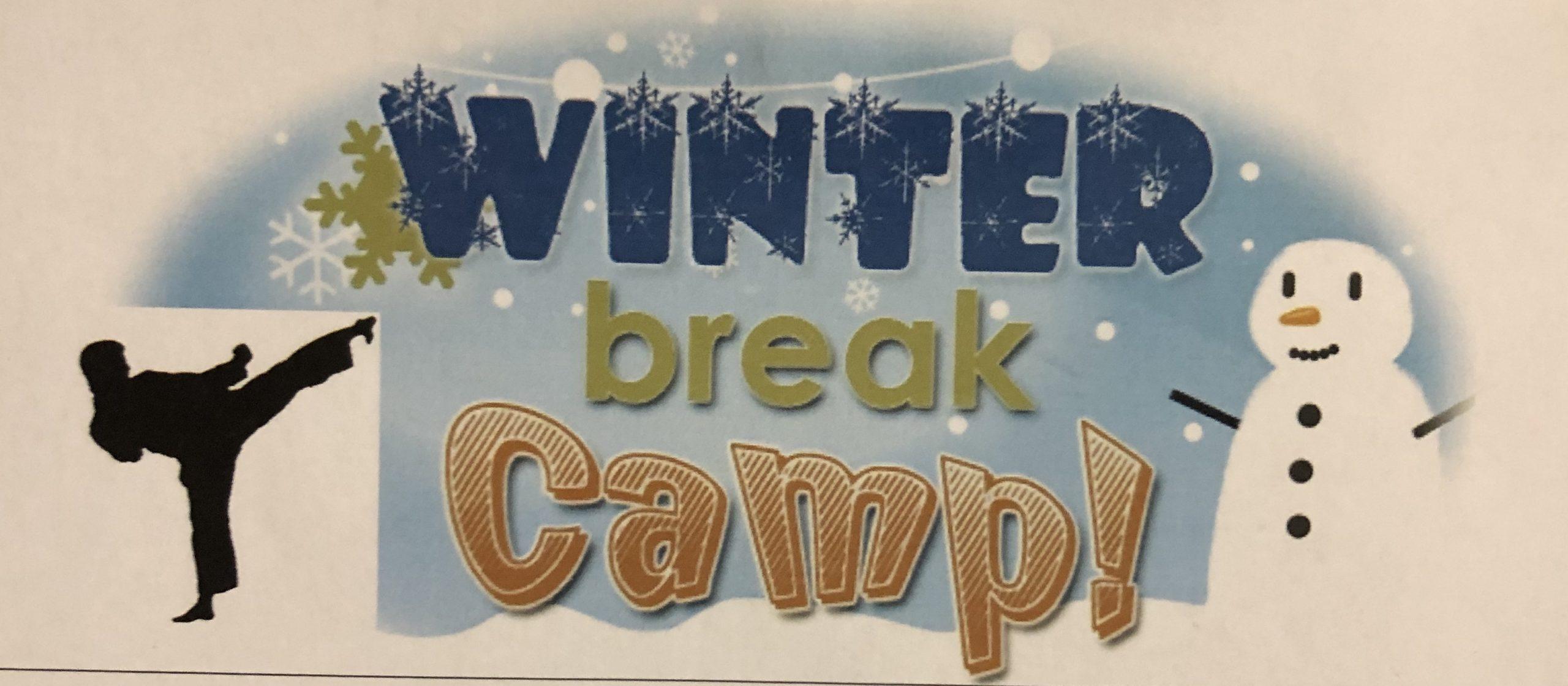 Winter Break Karate Camp